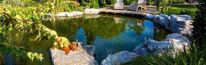 Bassin d'eau, cascade et fontaine